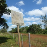 border_sign_tabasco