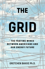 Review Essay: New Perspectives onEnergy